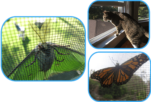 This picture shows three mosquito screen meshes with different usages.
