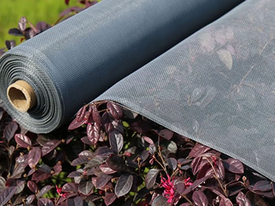 A roll of polyethylene insect screen in gray is placed on the flower shrubs.
