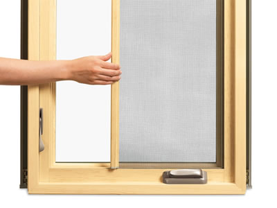 There is a horizontal retractable screen applied on a wood-frame window.