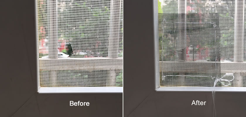 The left picture is the window screen before being repaired; the picture on the right shows the repaired one.