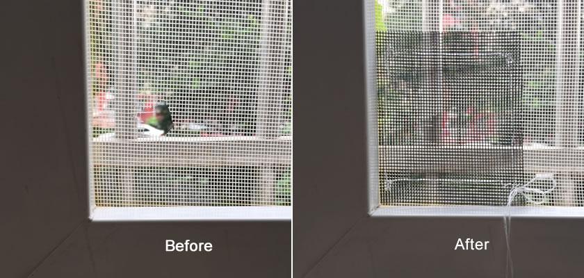 Two Methods To Repair Window Screens